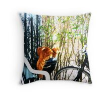 Cat on Grill ;-) Throw Pillow