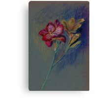 Flower-pastel sketch Canvas Print