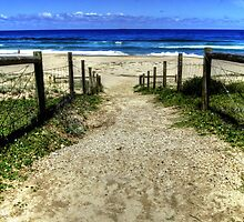"""Garie Beach"" NSW Australia by Toni McPherson"