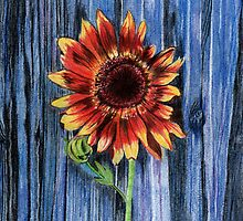 Sunflower on Blue Fence by Linda Ginn Art
