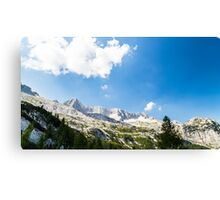 summer day on alps Canvas Print