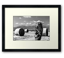 hay bale in the field Framed Print