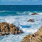 Too Close - Asilomar State Beach by JimPavelle