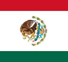 Iphone Case - Flag of Mexico by Mark Podger