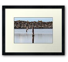 Wooden poles in water Framed Print