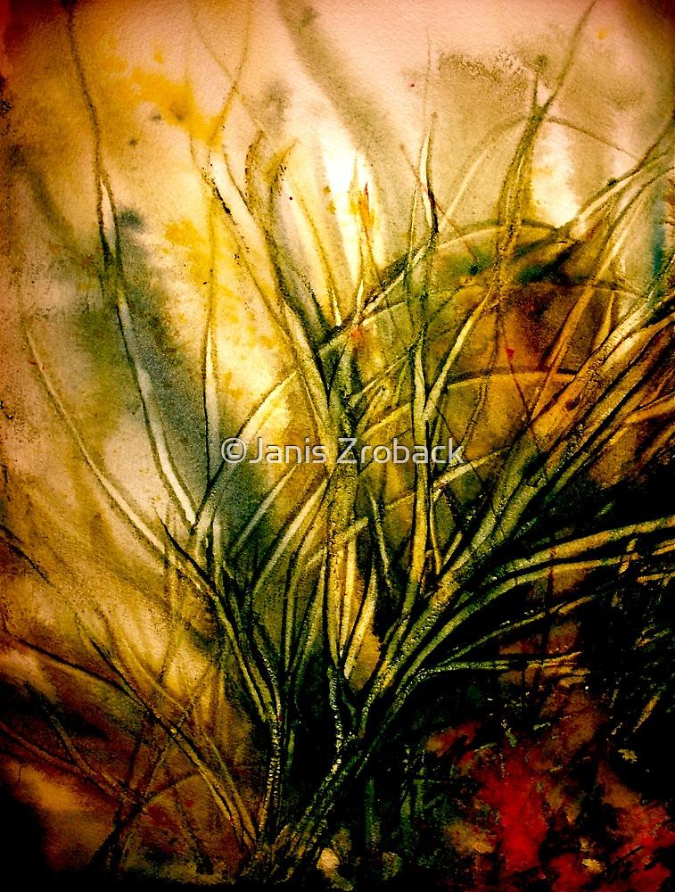 Seeing Deeper... by ©Janis Zroback