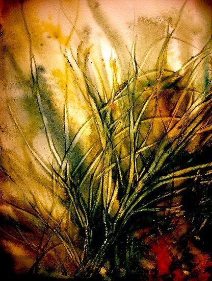 Seeing Deeper... by © Janis Zroback