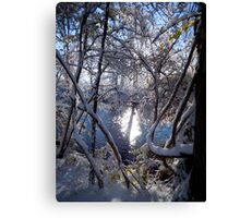 Winter River Reflections Canvas Print