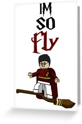 Harry Potter : Im So Fly Quidditch by GoPC