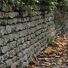 Dry Stone Wall  by Rich Fletcher