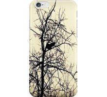 The Black Crow's Landing iPhone Case/Skin