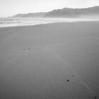 Pristine Beach by John Violet