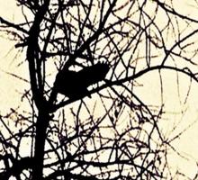 The Black Crow's Landing Sticker