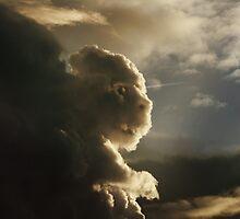 The Curious Cloud by Matt West