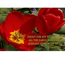 tulip shout! Photographic Print