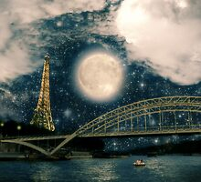 One Starry Night in Paris by BelleFlores