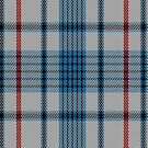 01651 Beck Dress Tartan Fabric Print Iphone Case by Detnecs2013