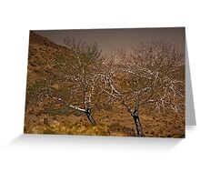 '' TWO TREES '' Greeting Card