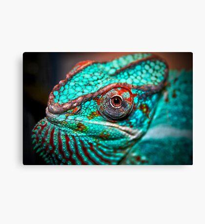 Tragan - Panther Chameleon Canvas Print