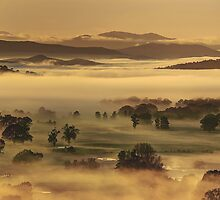 Spring morning, Ovens Valley by Kevin McGennan