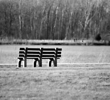 Ode to the Bench by Brian Gaynor
