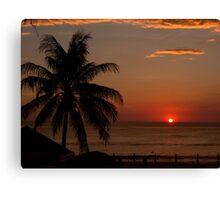 palm,phuket Canvas Print