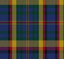 01668 Berwick Friendship Tartan Fabric Print Iphone Case by Detnecs2013