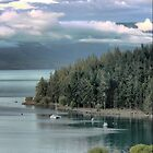 Wakatipu Dreaming by Larry Lingard-Davis
