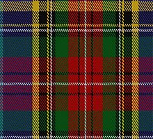 01671 Bethune Tartan Fabric Print Iphone Case by Detnecs2013