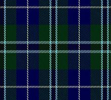 01673 Bhatti Tartan Fabric Print Iphone Case by Detnecs2013