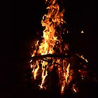 Camp Fire by Paul Halley