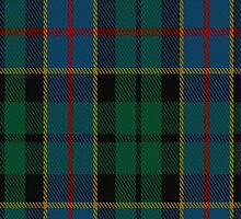 01681 Birse Tartan Fabric Print Iphone Case by Detnecs2013