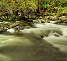 Mother Cummings Rivulet by Kevin McGennan