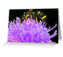 Bee in Flower Greeting Card