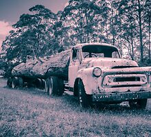 Vintage Truck Toned by Mandy  Harvey