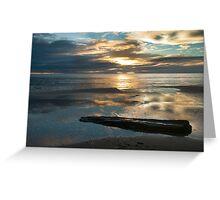 Washed Up - Etty Bay sunrise Greeting Card