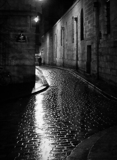 A wet night in Paris by Flobpic