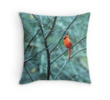Early Morning Chirper (EXPLORED 4-6-13 #405) Throw Pillow