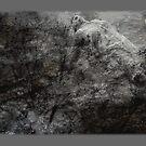 asomatous by David Kessler