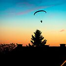 Paraglider flying over the rooftops at sunset by Mario Cehulic