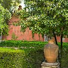 Detail of Gardens - Real Alcazar   by kkmarais