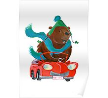 Bear in car Poster