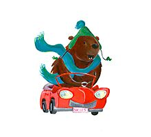 Bear in car Photographic Print