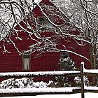 Red House White Snow by Robert Zunikoff