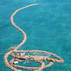 Loopy by Francis Drake