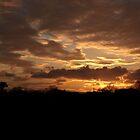 Golden Sky by devil001