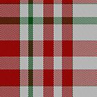 01709 Border Sett Artefact Tartan Fabric Print Iphone Case by Detnecs2013
