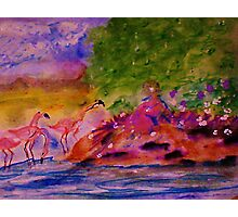 Watching the Flamingos while sitting on bank, watercolor Photographic Print