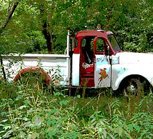 Old Texaco Toll Truck 1 by Tina Hailey
