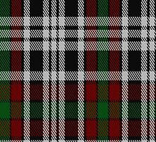 01713 Borthwick Dress Clan/Family Tartan Fabric Print Iphone Case by Detnecs2013